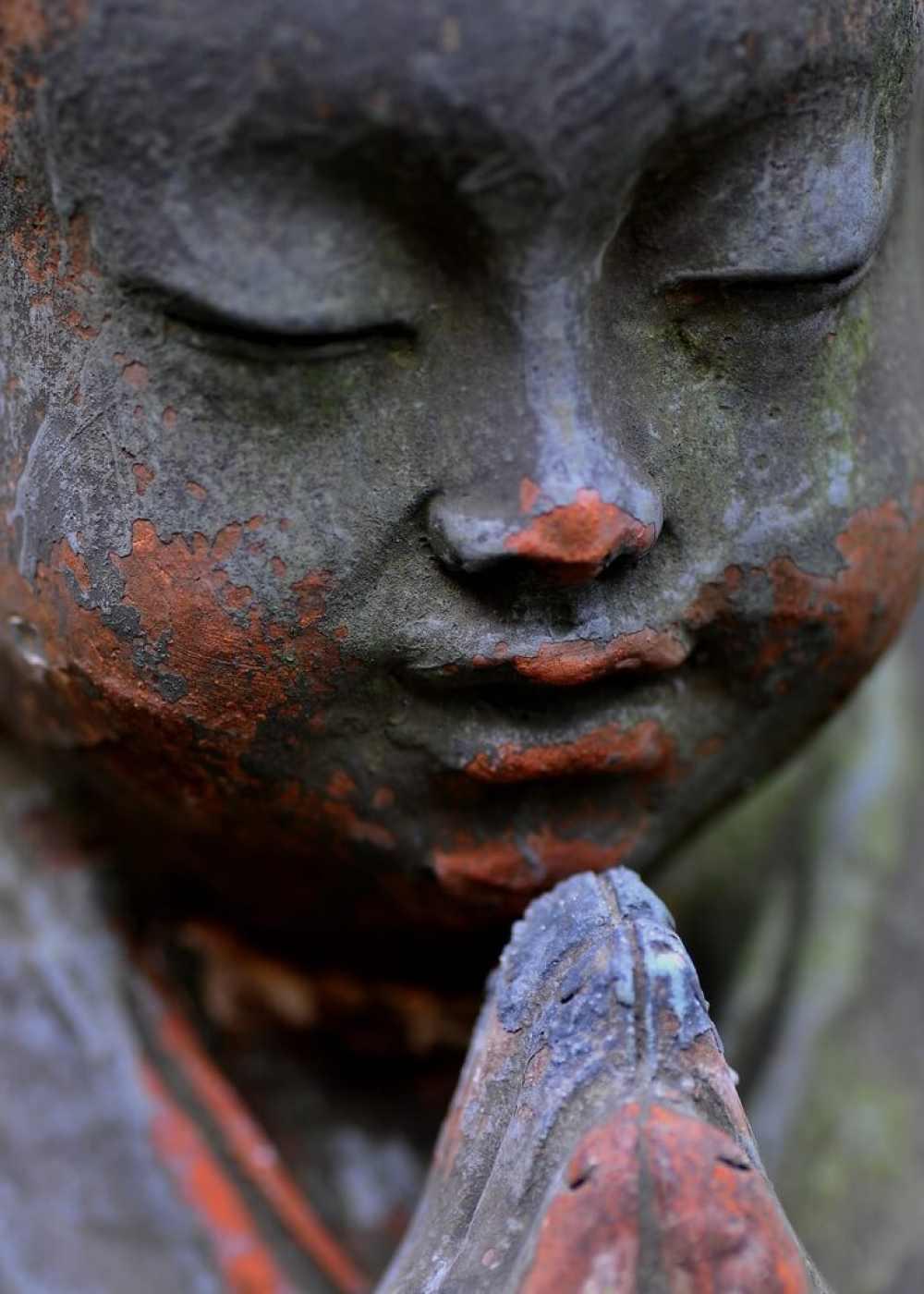 budha praying
